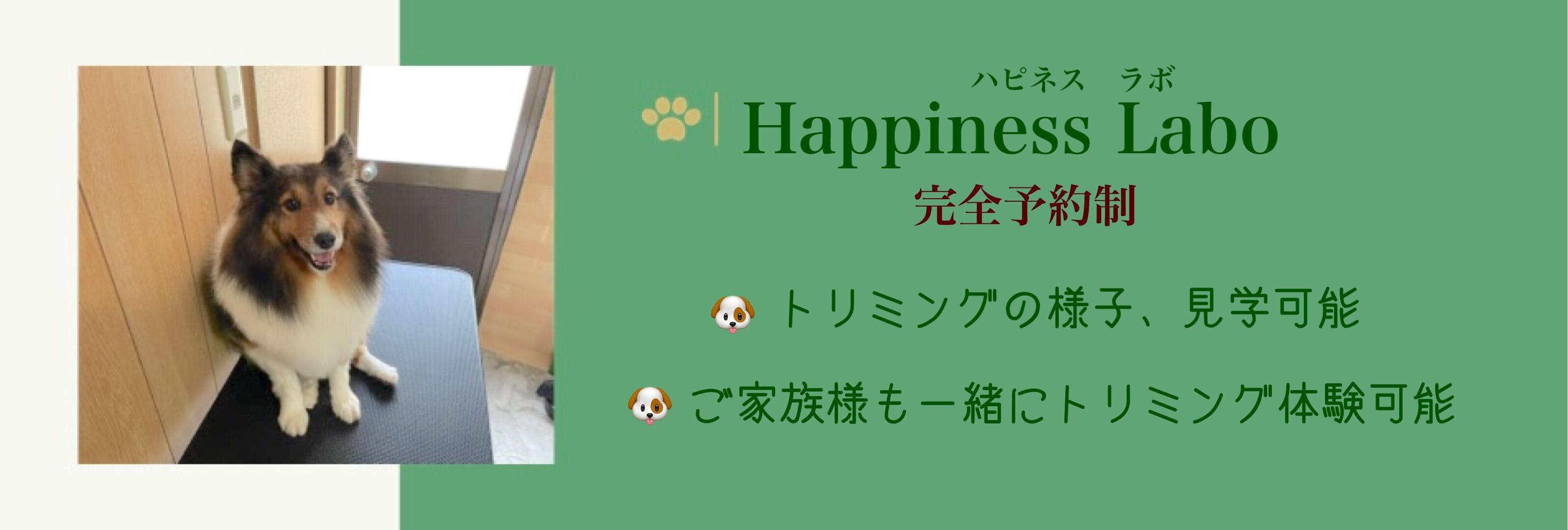 Happiness  Labo(ハピネス ラボ)
